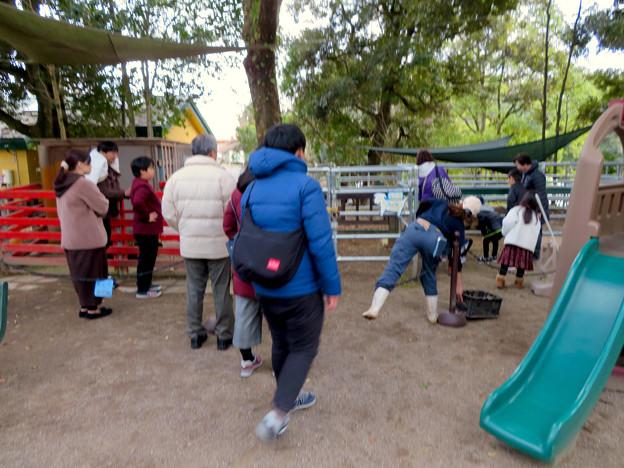 Photos: 日本モンキーセンター「Kids Zoo」 - 7