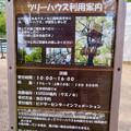 Photos: 日本モンキーセンター「Kids Zoo」 - 10:ツリーハウスの利用案内
