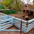 Photos: 日本モンキーセンター「Kids Zoo」 - 12:ウサギの家