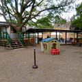 Photos: 日本モンキーセンター「Kids Zoo」 - 13