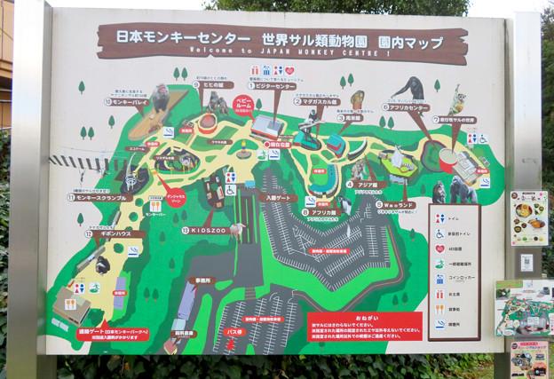 日本モンキーセンター No - 4:園内マップ