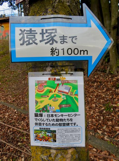 日本モンキーセンター No - 5:猿塚への案内
