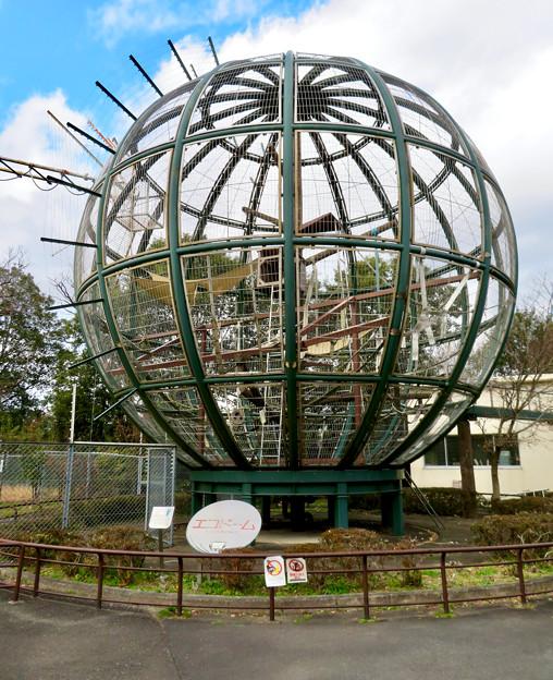 日本モンキーセンター No - 7:「エコドーム」と名付けられてる獣舎