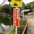 Photos: 日本モンキーセンター No - 19:モンキースクランブル下の「ウンチ注意」の看板