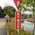 Photos: 日本モンキーセンター No - 20:モンキースクランブル下の「ウンチ注意」の看板