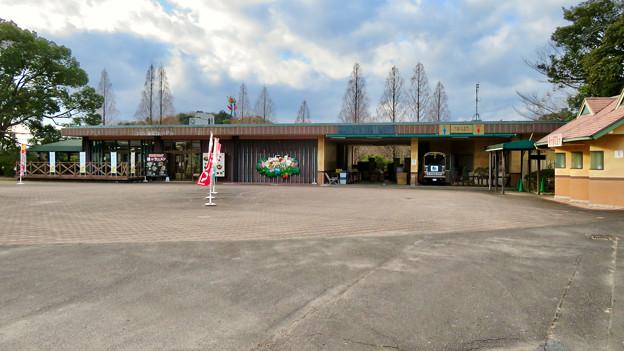 日本モンキーセンター No - 38:レストラン
