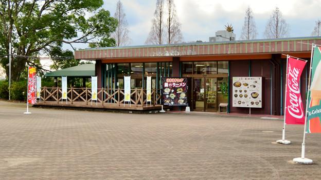 日本モンキーセンター No - 39:レストラン
