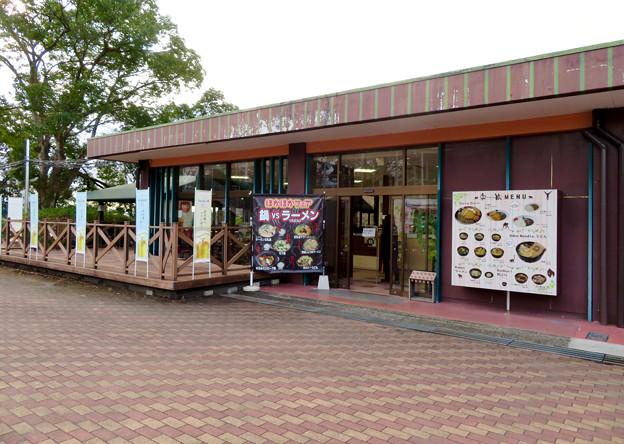 日本モンキーセンター No - 43:レストラン