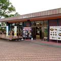 Photos: 日本モンキーセンター No - 43:レストラン
