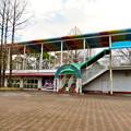 Photos: 日本モンキーセンター No - 45:元は何かの施設だったと見られる休憩所