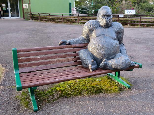 日本モンキーセンター No - 52:ベンチに座るゴリラ像