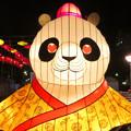 名古屋中国春節祭 2019:夜のイルミネーション - 4(目がハートマークのパンダ)