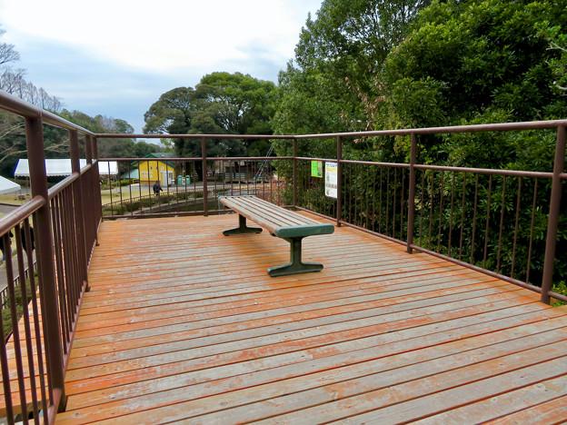 Photos: 日本モンキーセンター「リスザルの森」の高所観察スペース - 3