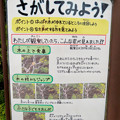 日本モンキーセンター「リスザルの森」の高所観察スペース - 4:観察ポイントの説明