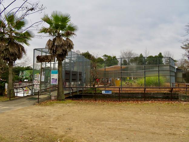 日本モンキーセンター「WAOランド」入り口 - 1