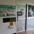 Photos: 日本モンキーセンター アフリカセンター「夜行性サルの世界」- 1