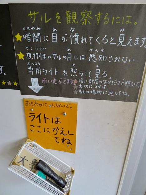 日本モンキーセンター アフリカセンター「夜行性サルの世界」- 3:貸し出されてる専用ライト