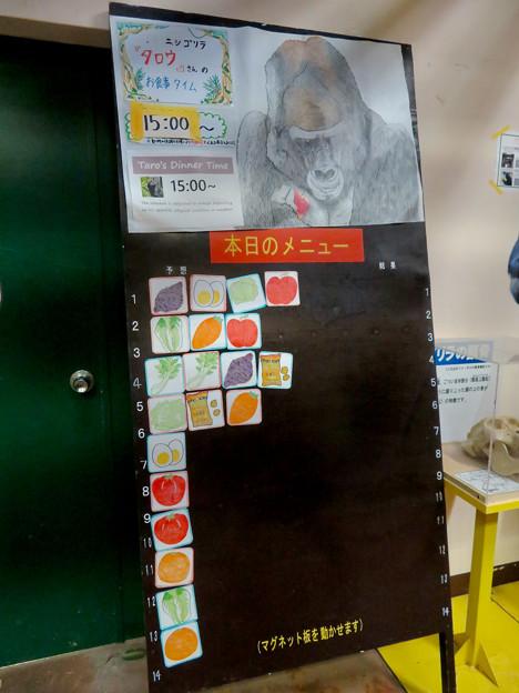 Photos: 日本モンキーセンター:ゴリラの食事メニュー