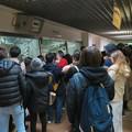 Photos: 日本モンキーセンター:ゴリラの食事風景を見ている人たち - 2