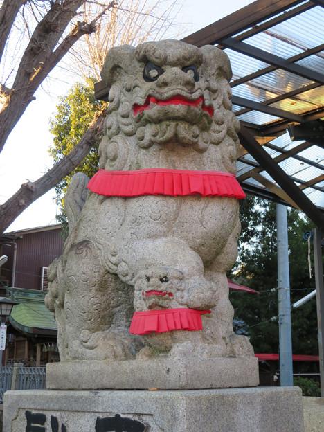 金山神社 - 19:狛犬