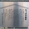 Photos: 須佐之男社裏にある河童像 - 3