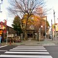 Photos: 椿神明社 - 3