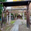 Photos: 椿神明社 - 7