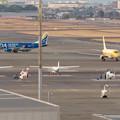 Photos: エアポート名古屋スカイデッキから見えたFDAの飛行機 - 1