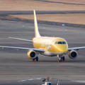 Photos: エアポート名古屋スカイデッキから見えたFDAの飛行機 - 2