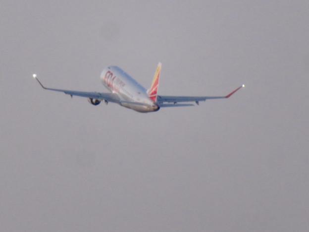 エアポート名古屋スカイデッキから見えたFDAの飛行機 - 4