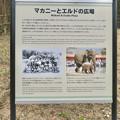 東山動植物園:旧アジアゾウ舎跡地に整備された「マカニーとエルドの広場」- 2