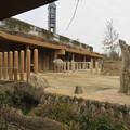 Photos: 東山動植物園のアジアゾウ舎「ゾージアム」 - 4