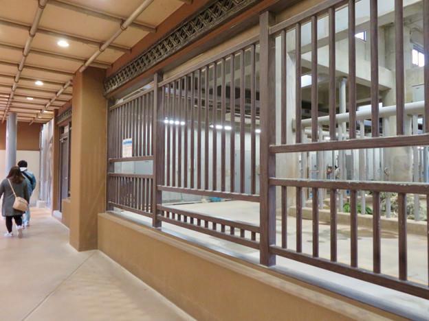 東山動植物園のアジアゾウ舎「ゾージアム」 - 7