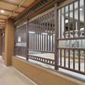 Photos: 東山動植物園のアジアゾウ舎「ゾージアム」 - 7