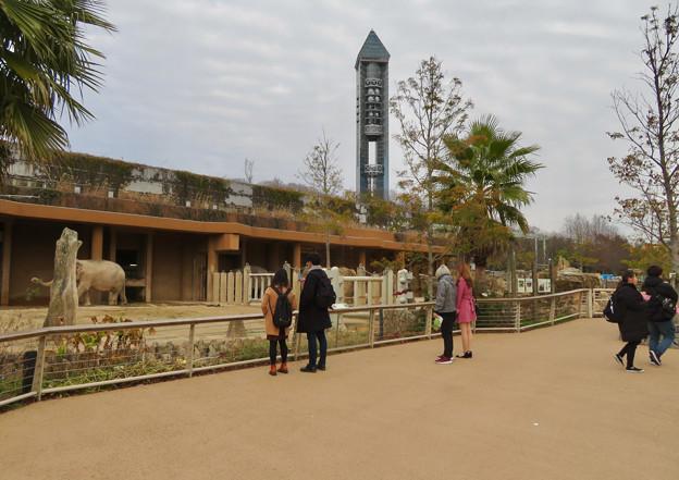 東山動植物園のアジアゾウ舎「ゾージアム」 - 8