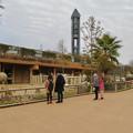 Photos: 東山動植物園のアジアゾウ舎「ゾージアム」 - 8