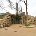 Photos: 東山動植物園のアジアゾウ舎「ゾージアム」 - 16