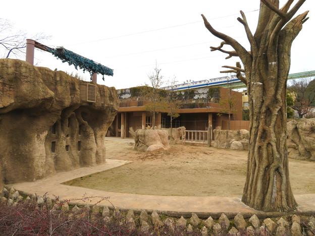 東山動植物園のアジアゾウ舎「ゾージアム」 - 17