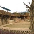 Photos: 東山動植物園のアジアゾウ舎「ゾージアム」 - 17