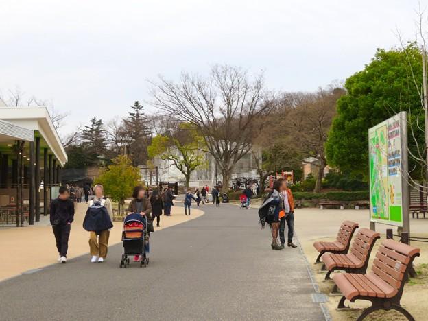 割りと人の少ない冬の日の東山動植物園