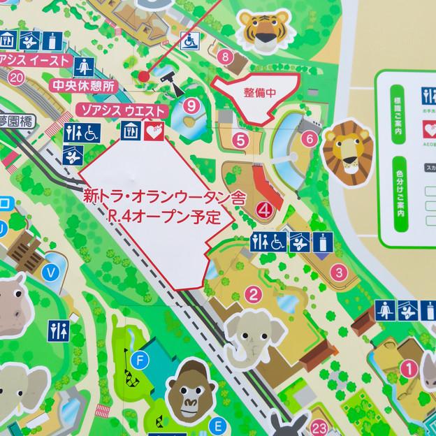 東山動植物園 現在整備工事中のエリア(2020年1月)- 1:地図