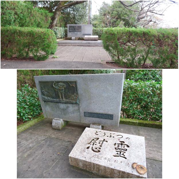 東山動植物園:動物の慰霊碑 - 4