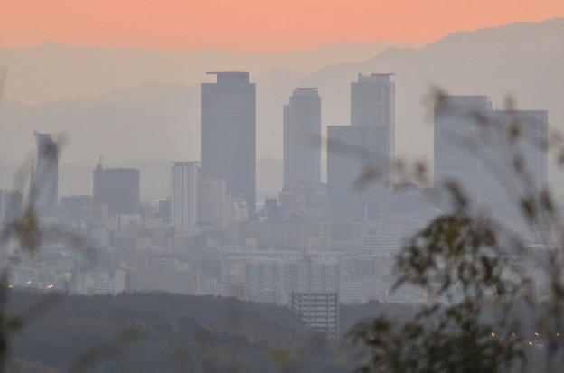 東谷山展望台から見た景色 - 1:名駅ビル群