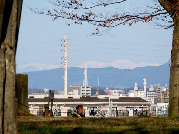 笠寺公園から見えた瀬戸デジタルタワーと雪を頂く山脈 - 4