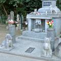 稲荷山 長楽寺 No - 5:動物観音