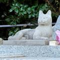 稲荷山 長楽寺 No - 6:動物観音の猫像