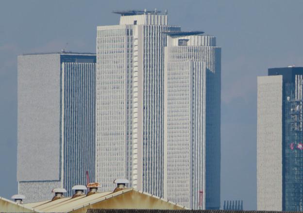Photos: 中川運河の東海橋から見た名駅ビル群 - 4
