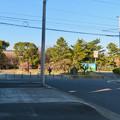 荒子公園 - 1:南側の梅園