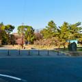 荒子公園 - 2:南側の梅園
