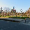 荒子公園 - 5:南側の梅園